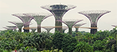 Gardens by the Bay, Singapur
